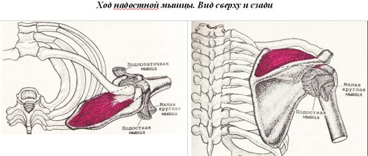 lábfájdalom a csontról az ízületből
