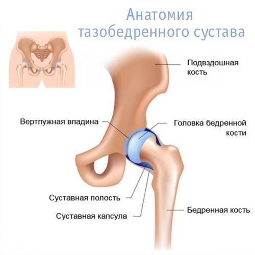 kenőcs a nyaki gerinc csontritkulásának kezelésére