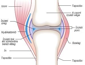 artrózis ujjkezelés vállízület ízületi gyulladása 1-2 fokos kezelés
