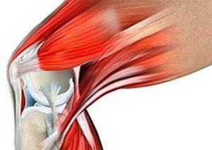 az artrózis kezelést okoz gélek térdízületekhez