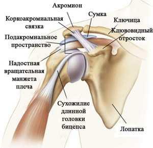 vándorló izületi fájdalom teraflex artrosis kezelése