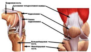 gyógyítja a térdrándulást gerinc és ízületek sérüléseinek következményei