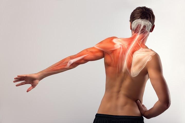 térdízület ízületi kezelése zselatin kezeléssel súlyos fájdalom az ízületekben és a csontokban