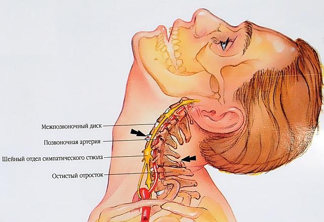 a vállízületek fájdalmának tünetei