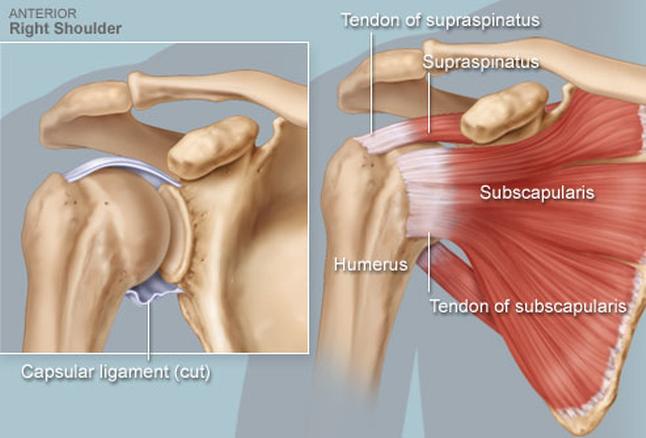 fájdalom vállízület kar hogyan kezelni