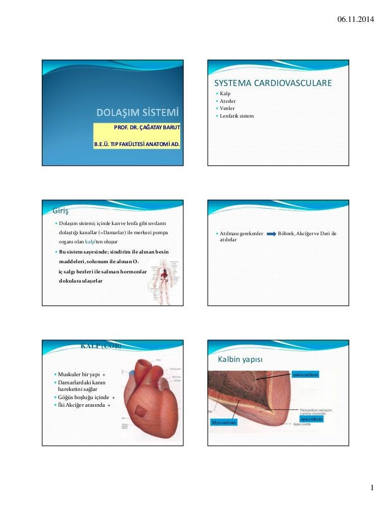 Lábujjak artrózisa kenőcskezelés. www.nelegybeteg.hu - Zsoldos Bence weblapja