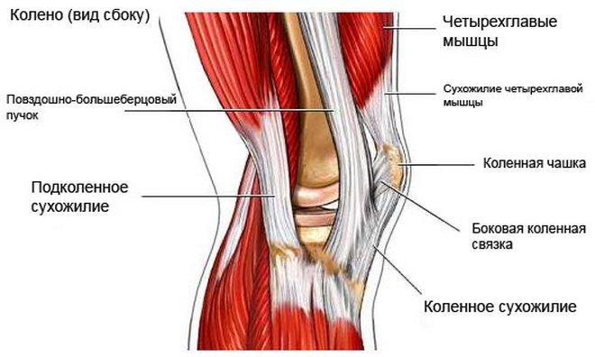 mi a térd osteochondrosis csípőízületi kezelés coxarthrosisának súlyosbodása