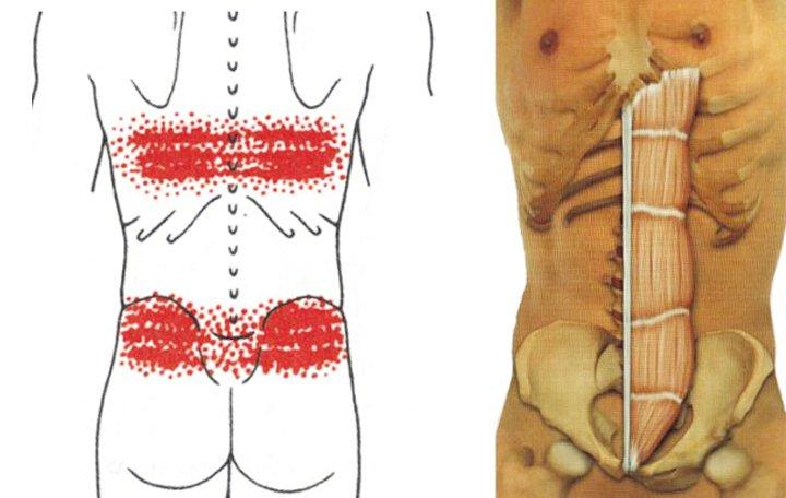 gyakorlatok sorozata az artrózis kezelésében ízületek és szalagok helyreállítása