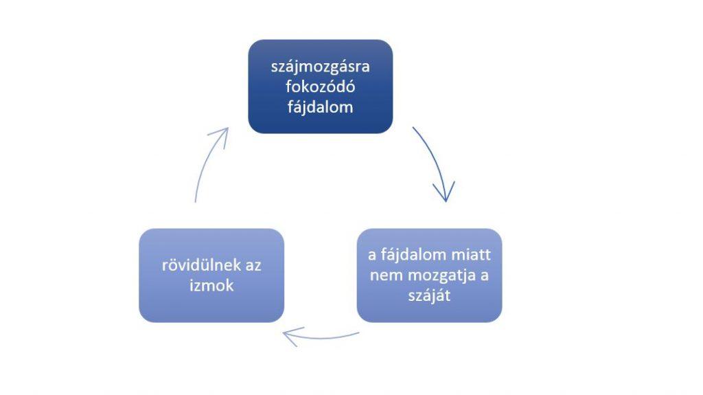 közös kezelés tbilisi