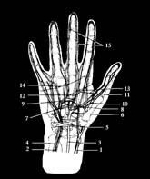 megtöri a kéz és a láb ízületeit, mint hogy kezelje