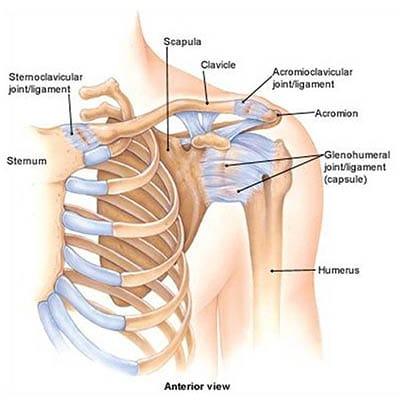 Hogyan lehet diagnosztizálni és kezelni a rotator cucc sérüléseket