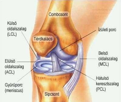 csípőízület deformált ízületi kezelés 1. fokú deformáló artrózis kezelése